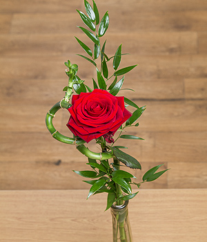 A luxurious single red Rose encased in long lasting twisted lucky Bamboo with greenery and free chocolates.